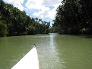 River boat ride in Bohol